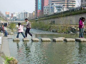 清渓川の飛び石